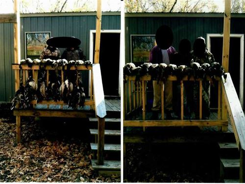 Rare 183 Green Timber Duck Lea : Weiner : Poinsett County : Arkansas