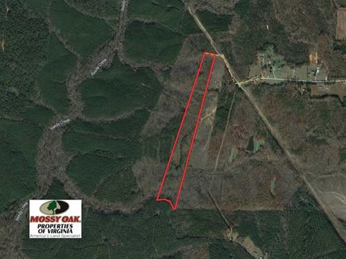 30 Acres of Hunting And Recreation : Victoria : Lunenburg County : Virginia