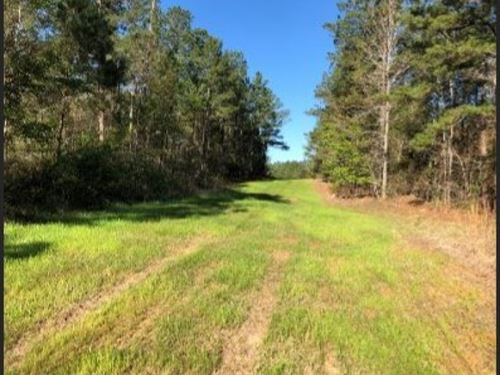 100 Acres In Attala County In Goodm : Goodman : Attala County : Mississippi