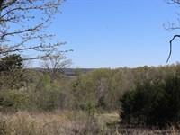 Ozarks Property Partial Lake View : Elizabeth : Baxter County : Arkansas