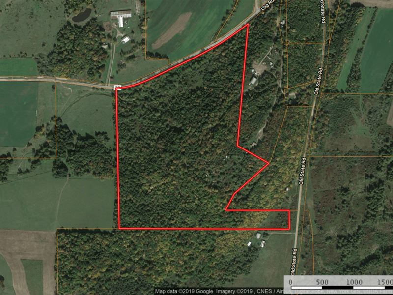 Hunting Property in Upstate NY : Ranch for Sale : Troupsburg