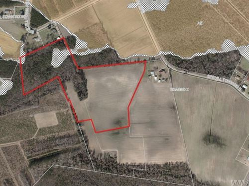 Farm, Grazing, Timber : Creswell : Washington County : North Carolina