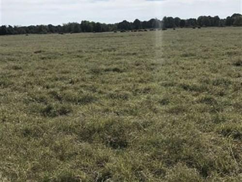Great Livestock Farm : Colcord : Delaware County : Oklahoma