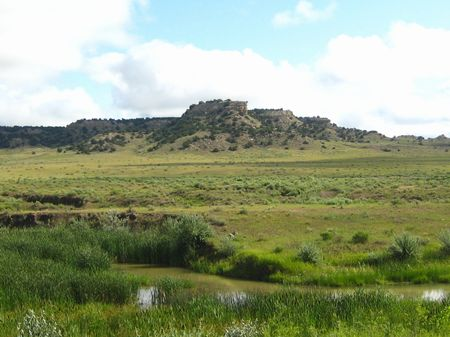 Ranch Liquidation175 Ac 3700 Ft Crk : Co City : Huerfano County : Colorado
