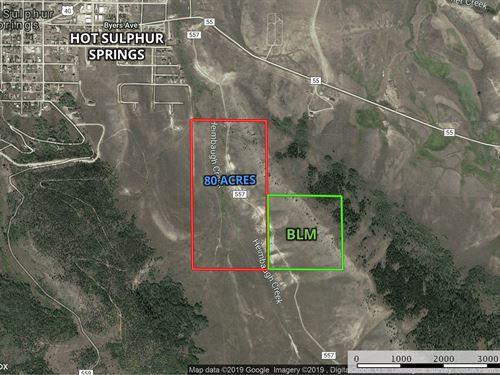 Bordering Blm, Great Equine : Hot Sulphur Springs : Grand County : Colorado
