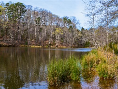 38+/- Acres With Large Private Pond : Woodruff : Spartanburg County : South Carolina