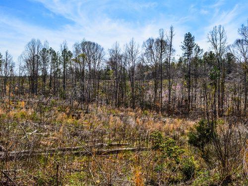 18+/- Acres In Woodruff : Woodruff : Spartanburg County : South Carolina