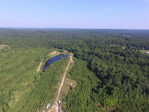 Blue Creek Outfitters High Fence : Dadeville : Tallapoosa County : Alabama