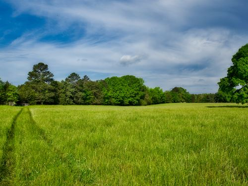 Saluda Farm Acreage : Saluda : South Carolina