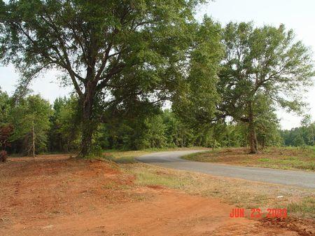80 Acres : Evergreen : Conecuh County : Alabama