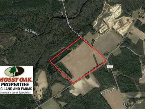 97.15 Acres of Farm And Hunting LA : Evergreen : Columbus County : North Carolina