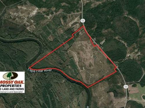 416 Acres of Hunting And Timber LA : Kelly : Bladen County : North Carolina