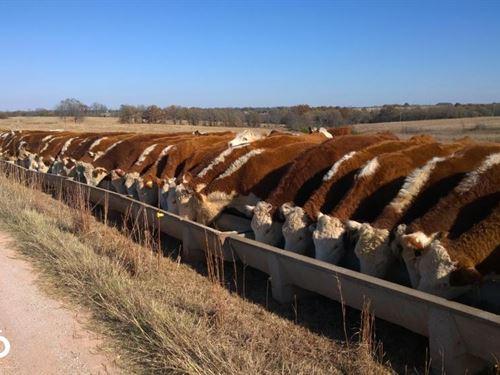 Destiny Ranch, 470 : Saint Louis : Pottawatomie County : Oklahoma
