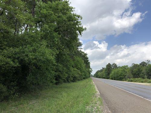 388 Acres Jasper County : Buna : Jasper County : Texas