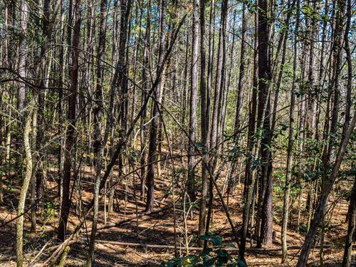 29+/- Acre Recreational Parcel : Woodruff : Spartanburg County : South Carolina
