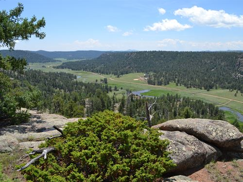 Above The Clouds : Florissant : Teller County : Colorado