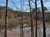 Avant East Tract : Eatonton : Putnam County : Georgia