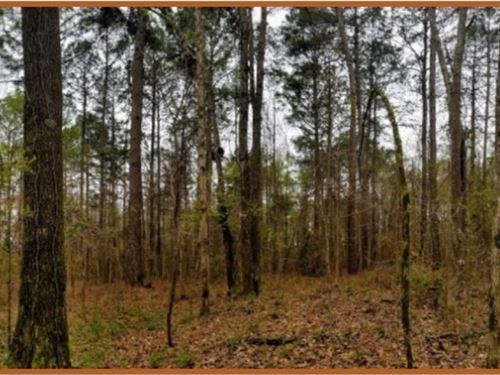 42 Acres In Copiah County In Hazleh : Hazlehurst : Copiah County : Mississippi
