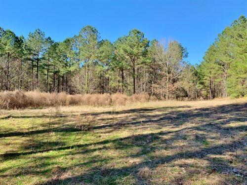 Secluded Hunting Land Bordering Hom : Meadville : Franklin County : Mississippi