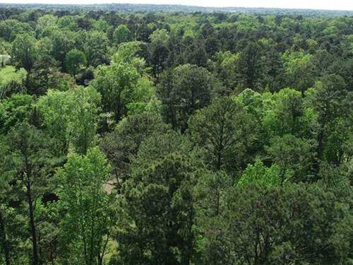 Twelve Mile Bayou Property, Caddo : Shreveport : Caddo Parish : Louisiana