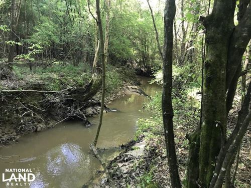 Hunting, Investment And Timber With : Philadelphia : Neshoba County : Mississippi
