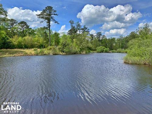Jachin Kinterbish Creek Lake & Hunt : Jachin : Choctaw County : Alabama