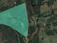 820 Game Ranch & 1533 Mineral Acres : Anderson : Grimes County : Texas