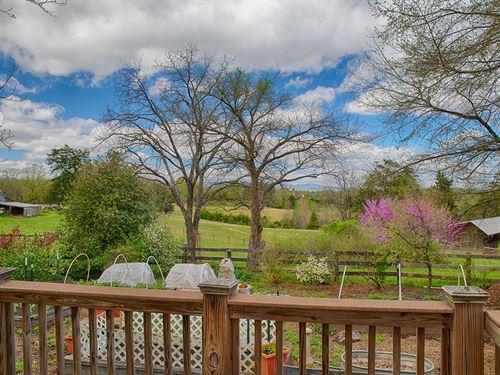 Mad Maggie Farm : Rochelle : Madison County : Virginia