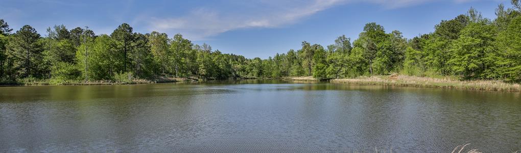 Penfield Plantation : Greensboro : Greene County : Georgia