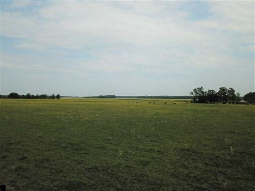 657 Acre Cattle Farm For Sale in : Beebe : Prairie County : Arkansas