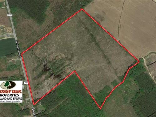 Under Contract, 39 Acres of Hunti : Gates : North Carolina