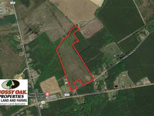 Under Contract, 23.35 Acres of Hu : Gates : North Carolina
