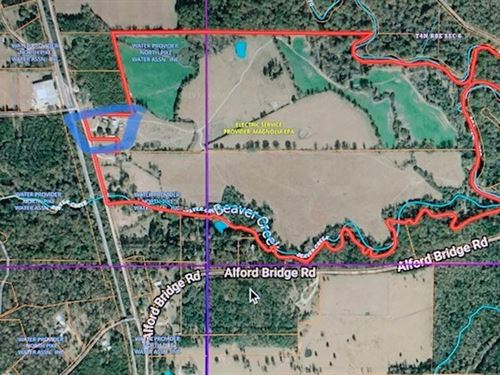 Pasture Land 200 Acres Pike County : Summit : Pike County : Mississippi