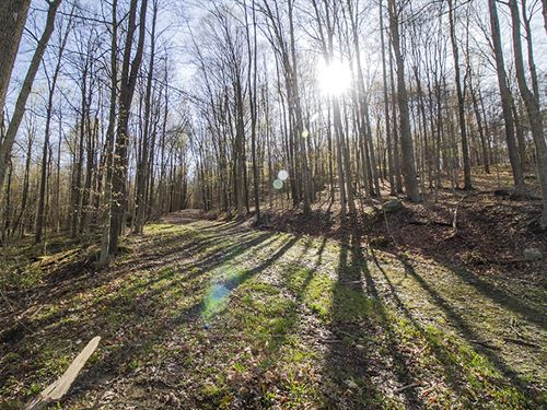 Opossum Run Rd, 50 Acres : Mansfield : Richland County : Ohio