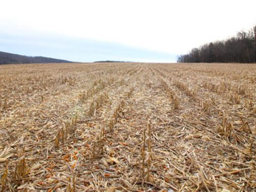 72 Acres Land, Great Views : Unityville : Lycoming County : Pennsylvania