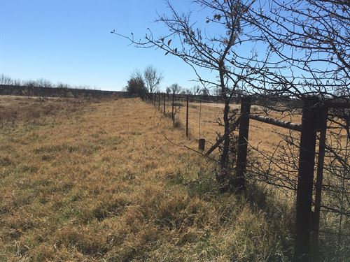 Ranch With Water, Pasture, Fields : Perrin : Jack County : Texas