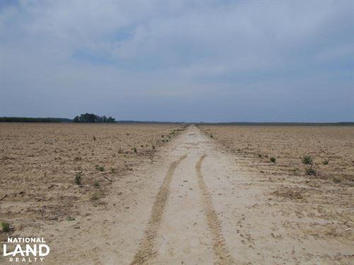 Morgan City Irrigated Farmland : Swiftown : Leflore County : Mississippi