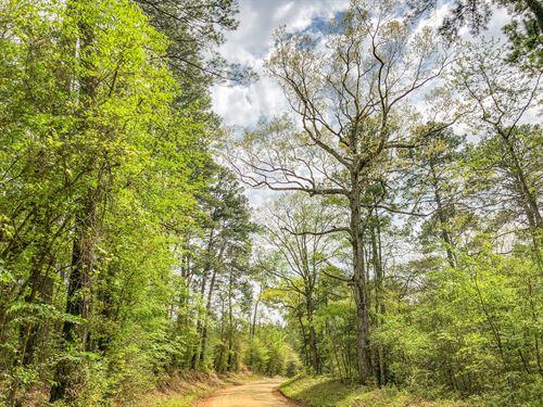 99 Acres Cr 2107 : Burkeville : Newton County : Texas