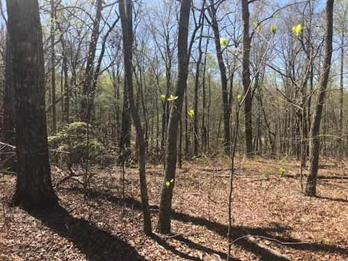 16.63 Acres, Talking Rock, Ga : Talking Rock : Pickens County : Georgia