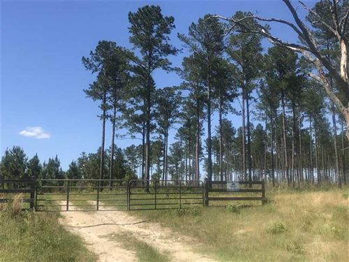 643 Acre Recreational Tract in Cla : Clayton : Barbour County : Alabama