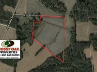 21 Acres of Farm And Hunting Land : Whiteville : Columbus County : North Carolina