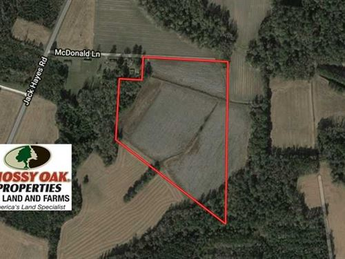 21 Acres of Farm And Hunting Land : Whiteville : Columbus County : North Carolina