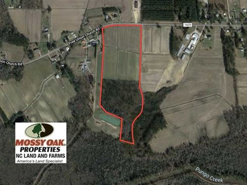 Reduced, 30 Acres of Investment : Pinetown : Beaufort County : North Carolina