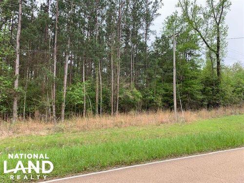 Cammack Track : Hazlehurst : Copiah County : Mississippi