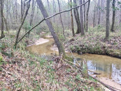 Hunting Camp & Acreage Great Ti : McCall Creek : Franklin County : Mississippi