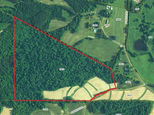 Great Recreational Tract Hunting : Alton : Pittsylvania County : Virginia
