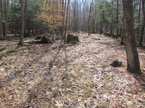 83 +/- Acres, Mostly Wooded : Shickshinny : Luzerne County : Pennsylvania