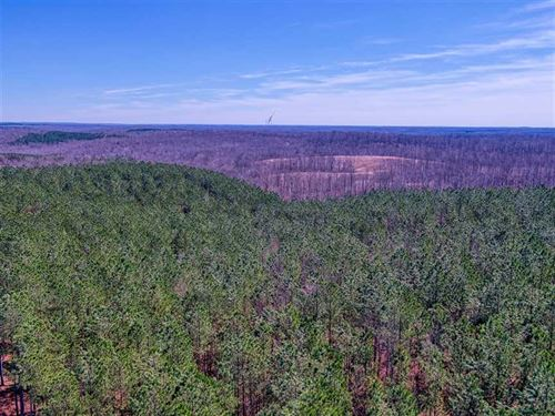 280 Acres For Sale in Dover, Stewa : Dover : Stewart County : Tennessee