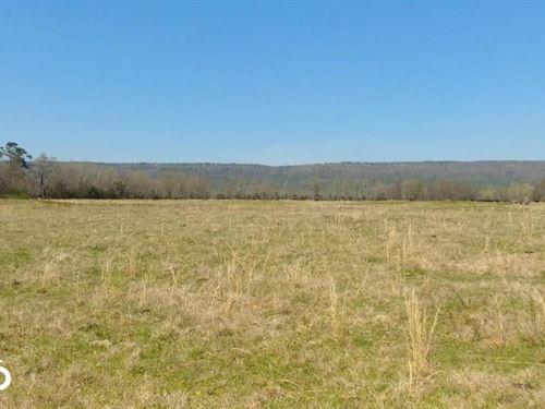 775 Acre Ranch at Bottom of Peti : Adona : Conway County : Arkansas