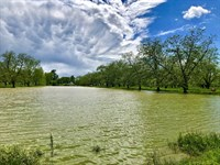 Large Recreational Hunting Acreage : Cloutierville : Natchitoches Parish : Louisiana